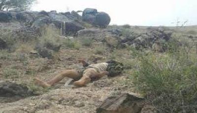 الجيش الوطني يعلن مصرع 10 قيادات ميدانية من المليشيات خلال يومين بالبيضاء