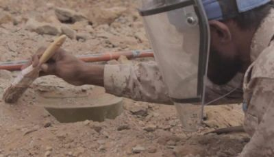 خلال اسبوع.. انتزاع أكثر من 1500 لغماً وعبوة ناسفة زرعتها مليشيات الحوثي