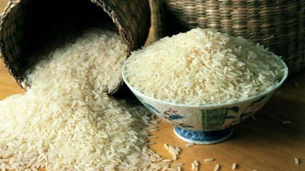 عالم صيني يبتكر طريقة زراعة الأرز بالمياه المالحة