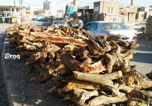 """كيف تحولت """"صنعاء"""" في عهد المليشيا الحوثية الى مدينة """"الحطب"""" بعد ارتفاع أسعار الغاز؟!"""