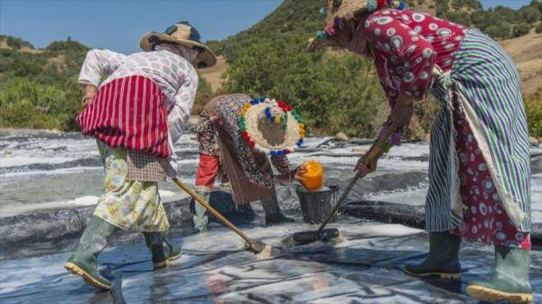 """""""نساء الملح"""" في المغرب.. أيادي """"الذهب الأبيض""""(تقرير)"""