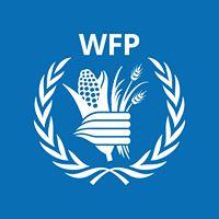 الغذاء العالمي يدين استهداف الحوثيين لمخازن ومطاحن الحبوب بالحديدة