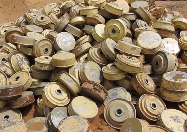نزع أكثر من ألفين لغم زرعتها مليشيا الحوثي خلال أسبوع واحد