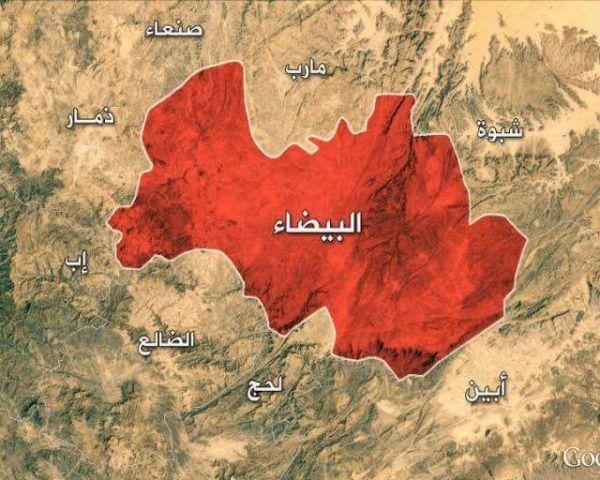 ناطق الجيش: مستمرون في تطهير البيضاء بإشراف وزارة الدفاع