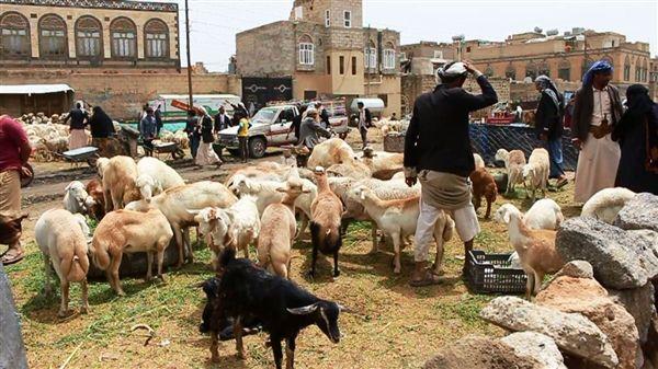 سكان صنعاء يستقبلون عيد الأضحى على وقع أزمات حادة وارتفاعات في أسعار الأضاحي