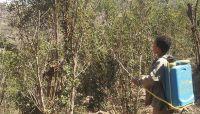 بضوء أخضر من الانقلاب.. انتشار «140» محلاً بالعاصمة صنعاء لبيع المبيدات بينها «محظورة»