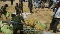 الجوف.. أجهزة الأمن تتلف أكثر من 1000 كيلو من الحشيش كانت في طريقها للحوثيين