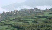 اشتباكات مسلحة بين قبليين والمليشيات الحوثية غرب صنعاء