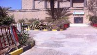 مليشيا الحوثي تحتطب أشجار الزينة في جامعة صنعاء القديمة (صور)