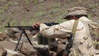 تقدمات ميدانية للجيش في تعز وخسائر كبيرة لمليشيا الحوثي في حجة