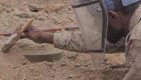 مسام ينتزع 8602 لغماً خلال شهر مايو زرعتها المليشيا الحوثية