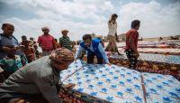 الهجرة الدولية: نزوح أكثر من 390 الف مدني في اليمن منذ بداية العام