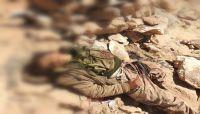 معارك نهم تلتهم عناصر الميليشيا.. وأحياء صنعاء تستقبل مئات القتلى من الحوثيين بلا توقف