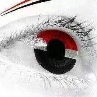 11 فبراير.. الصباح الذي أيقظ اليمنيين!